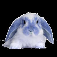 Usenet-ABC Feiertagsinfo: Ostermontag